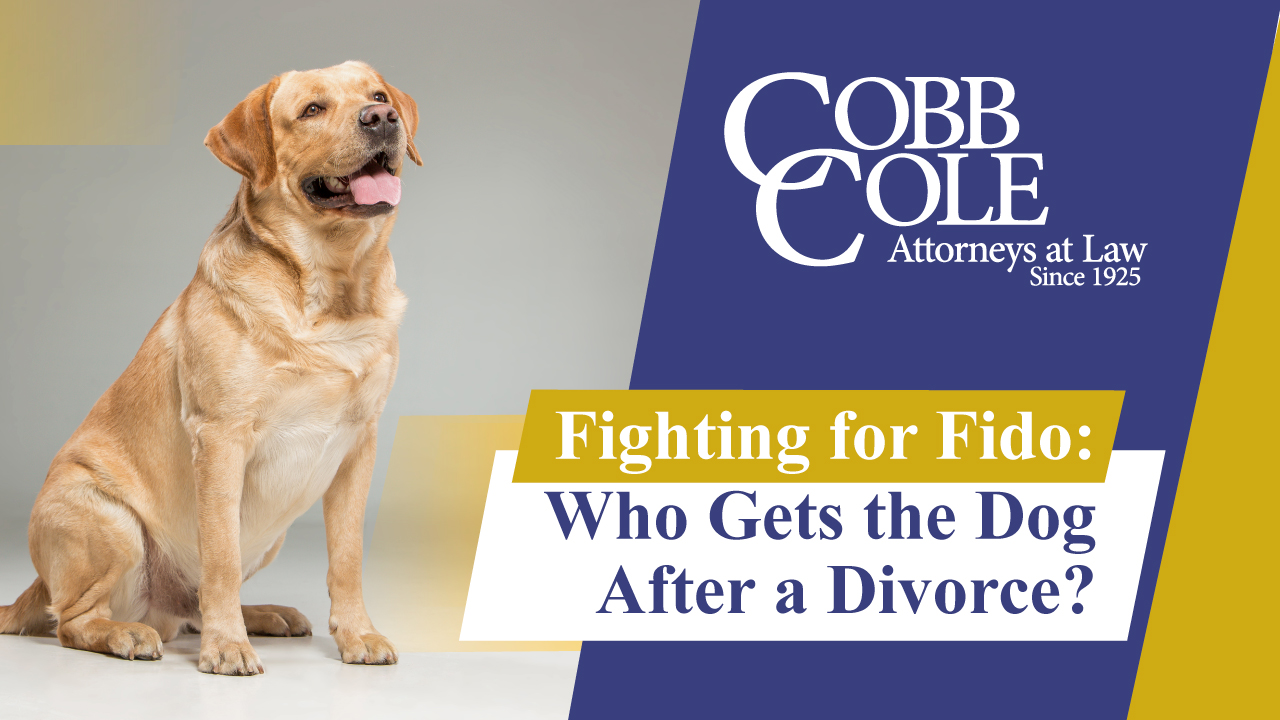 Fighting for Fido: Who Gets the Dog After a Divorce?